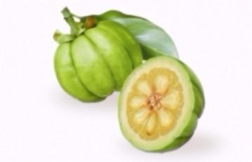 Garcinia Extract (Garcinia cambogia)
